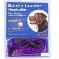 Gentle Leader Headcollar Purple