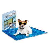 Shop For Pet Beds Online Mydeal Australia