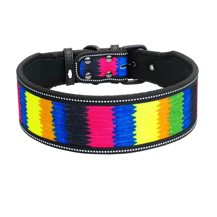 Premium Leather DOG COLLAR By RUMANI With Single Punch Hole With SS H//W