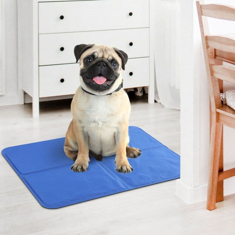 Charlie S Pet Cooling Chill Mat Large Buy Pet Beds