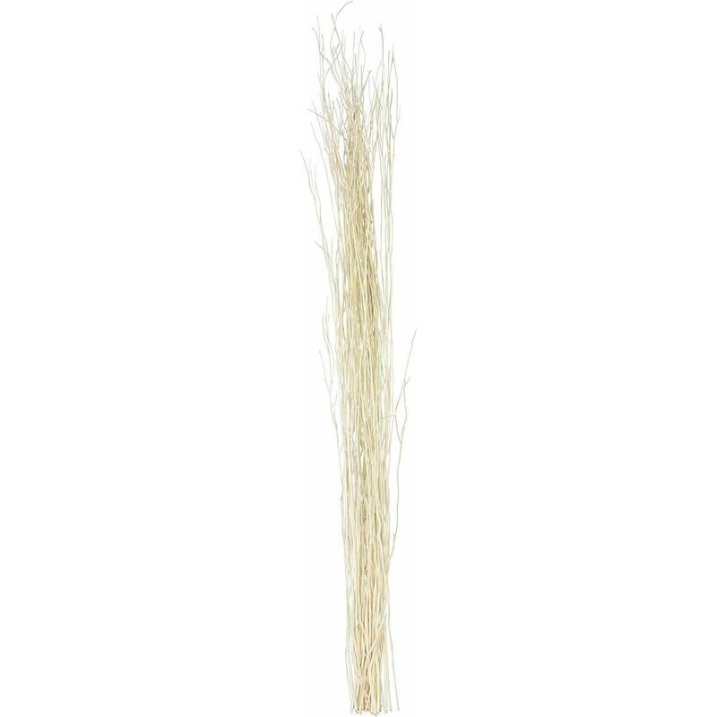 Leewadee Dried coloured natural grass bunch for floor vases decorative twig...