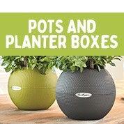 Pots & Planter Boxes