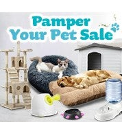 Pamper Your Pet