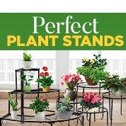 Perfect Plant Stands