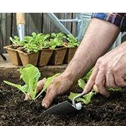View All Gardening